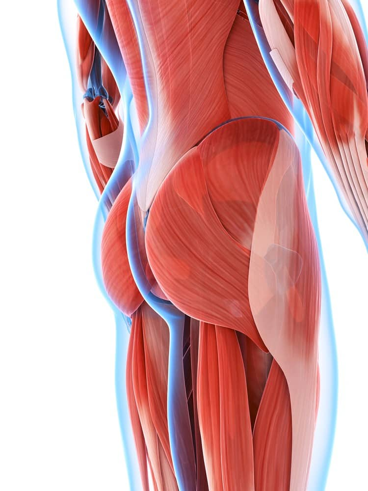 5 Reasons to Build Powerful Glutes for Athleticism: Part II