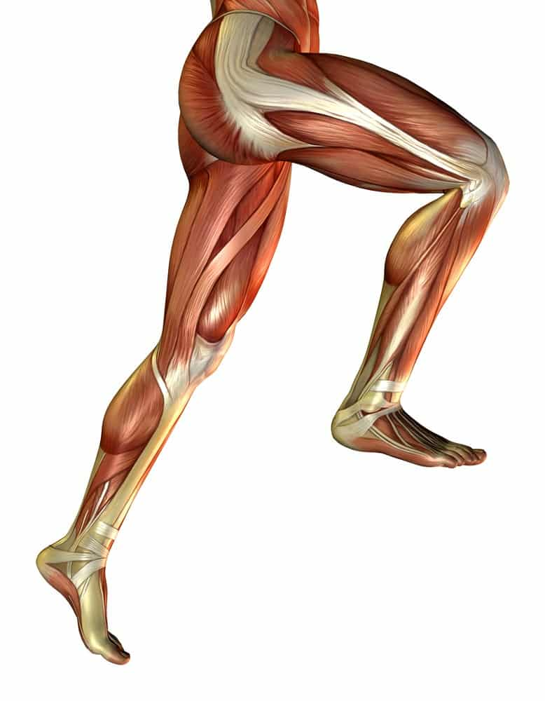 10 Commandments For Healthy Athletic Knees