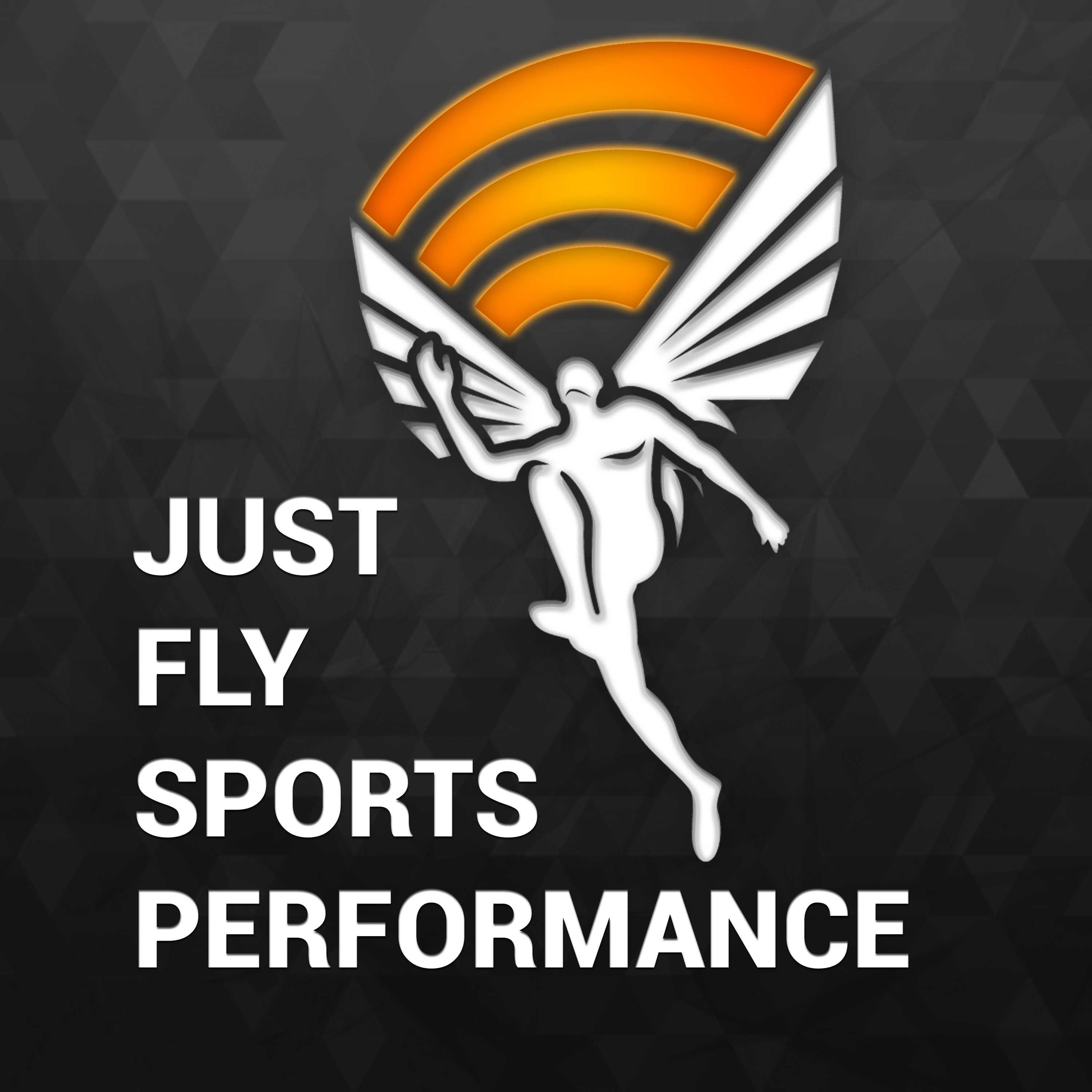 Just Fly Performance Podcast on Apple Podcasts