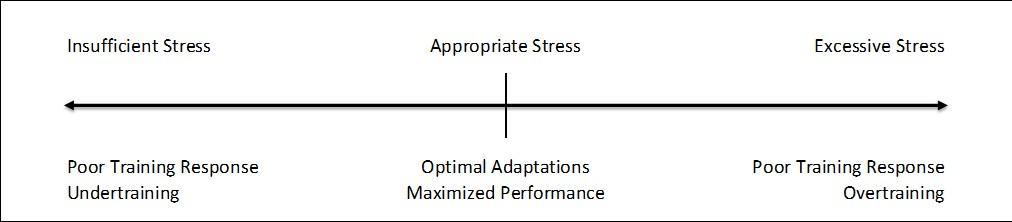 Figure 1.2 - Determining appropriate training stress