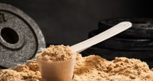 Which Protein is Best? A Few Pillars to Keep in Mind When Picking Protein